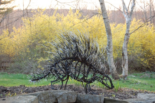 Porcupine by Wendy Klemperer - painted and weathered steel